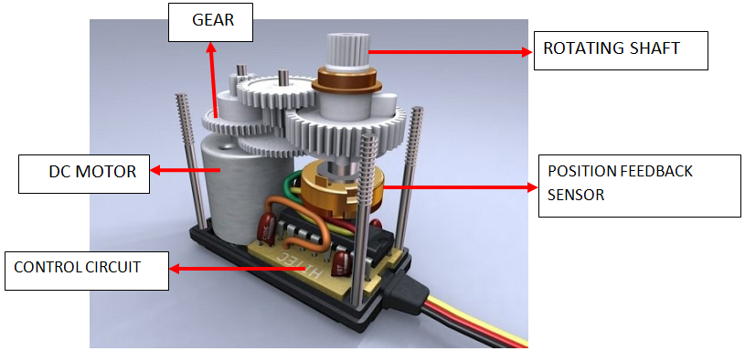 Virtual view of the internal parts of a typical DC servo motor.