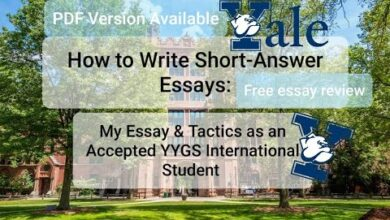 Photo of How to Write Short-Answer Essays – Essay and Tactics for YYGS International Student